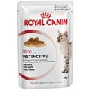 تصویر پوچ گربه بالغ در ژله Royal Canin
