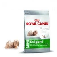 تصویر غذای خشک مغزدار Royal Canin مخصوص سگ های بدغذای نژاد کوچک - ۸۰۰گرمی