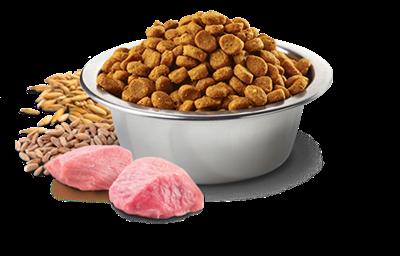 تصویر غذای خشک N&D بدون غلات مخصوص سگ بالغ کلیه نژاد ها حاوی گوشت بره و بلوبری - 2.5 کیلوگرم MEDIUM