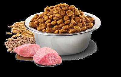 تصویر غذای خشک N&D مخصوص گربه بالغ حاوی مرغ و انار 10 کیلوگرم
