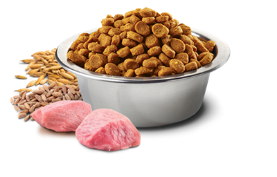 تصویر غذای خشک N&D مخصوص گربه بالغ حاوی  گوشت بره و بلوبری 300 گرم