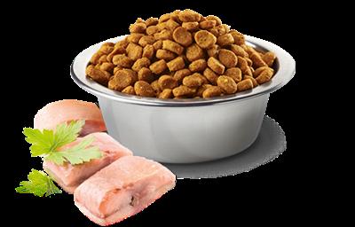 تصویر غذای خشک N&D بدون غلات مخصوص گربه بالغ حاوی ماهی کد و پرتغال - 1.5 کیلوگرم
