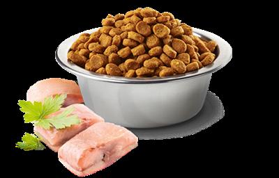 تصویر غذای خشک N&D بدون غلات مخصوص سگ بالغ حاوی ماهی و پرتغال MAXI