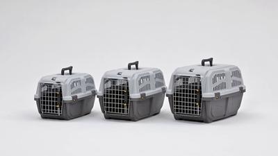 تصویر باکس سگ و گربه MPS مدل Skudo1