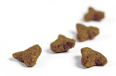 تصویر غذای خشک Josera مدل SensiCat مناسب برای بچه گربه - 400 گرم