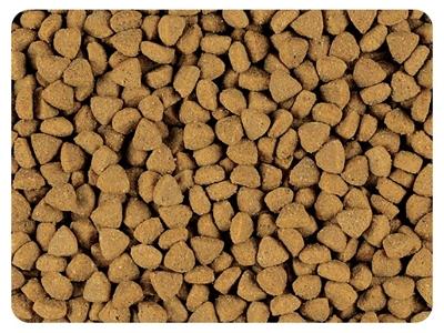 تصویر غذای خشک Propaln مدل HouseCat مخصوص گربه بالغ - 1.5 کیلوگرم
