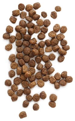 تصویر غذای خشک مخصوص سگ های نژاد کوچک EarthBorn مدل Holistic تهیه شده از گوشت مرغ - 2.5 کیلوگرم