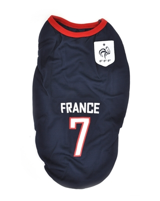 تصویر لباس سگ و گربه با طرح تیم ملی فرانسه S