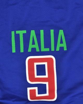 تصویر لباس سگ و گربه با طرح تیم ملی ایتالیا سایز S
