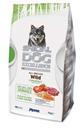 تصویر غذای خشک مخصوص سگ های بالغ Monge مدل Special Dog Excellence تهیه شده از گوشت گراز وحشی - 2 کیلوگرم
