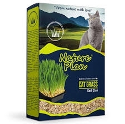 تصویر علف گربه نیم لیتری مخصوص گربه premium