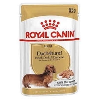 تصویر پوچ سگ مخصوص نژاد dachshund برند Royal canin