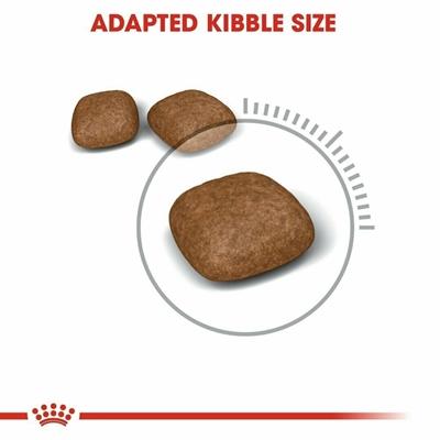 تصویر غذای خشک Royal Canin مدل URINARY مخصوص گربه پیشگیری از سنگ های ادراری (شرکتی) - 4 کیلوگرم