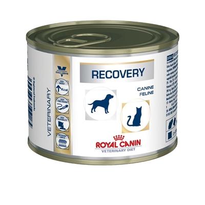 تصویر کنسرو ریکاوری Royal Canin مخصوص سگ و گربه - ۱۹۵ گرم