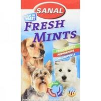تصویر مکمل و مولتی ویتامین  نعنایی  Sanal مخصوص سگ - 100 گرم