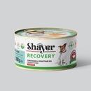 تصویر کنسرو ریکاوری Shayer مخصوص سگ با طعم مرغ و سبزیجات - 200 گرم