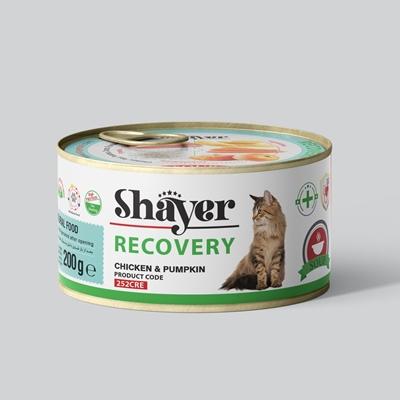 تصویر کنسرو ریکاوری Shayer مخصوص گربه با طعم مرغ و کدوحلوایی - 200 گرم