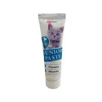 تصویر خمیر مولتی ویتامین Petalpin مخصوص بچه گربه با طعم مرغ-100گرم