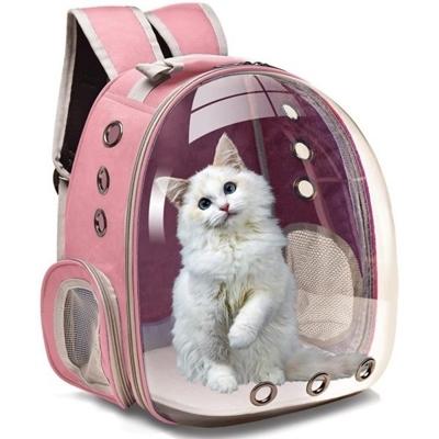 تصویر كوله فضايی مخصوص گربه